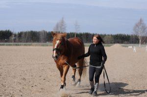 Hevonen ja Sonja